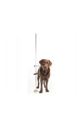 Κυνόμετρο - Show Tech Professional Adjustable Dog Measure Stick