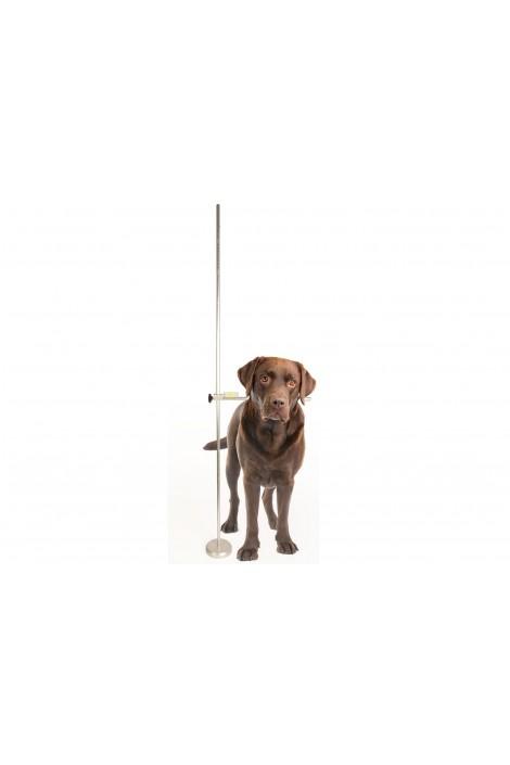 Show Tech Professional Adjustable Dog Measure Stick