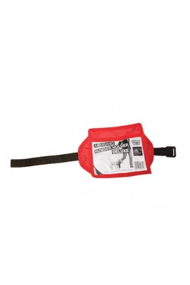 Show Tech Arm Band Number Holder