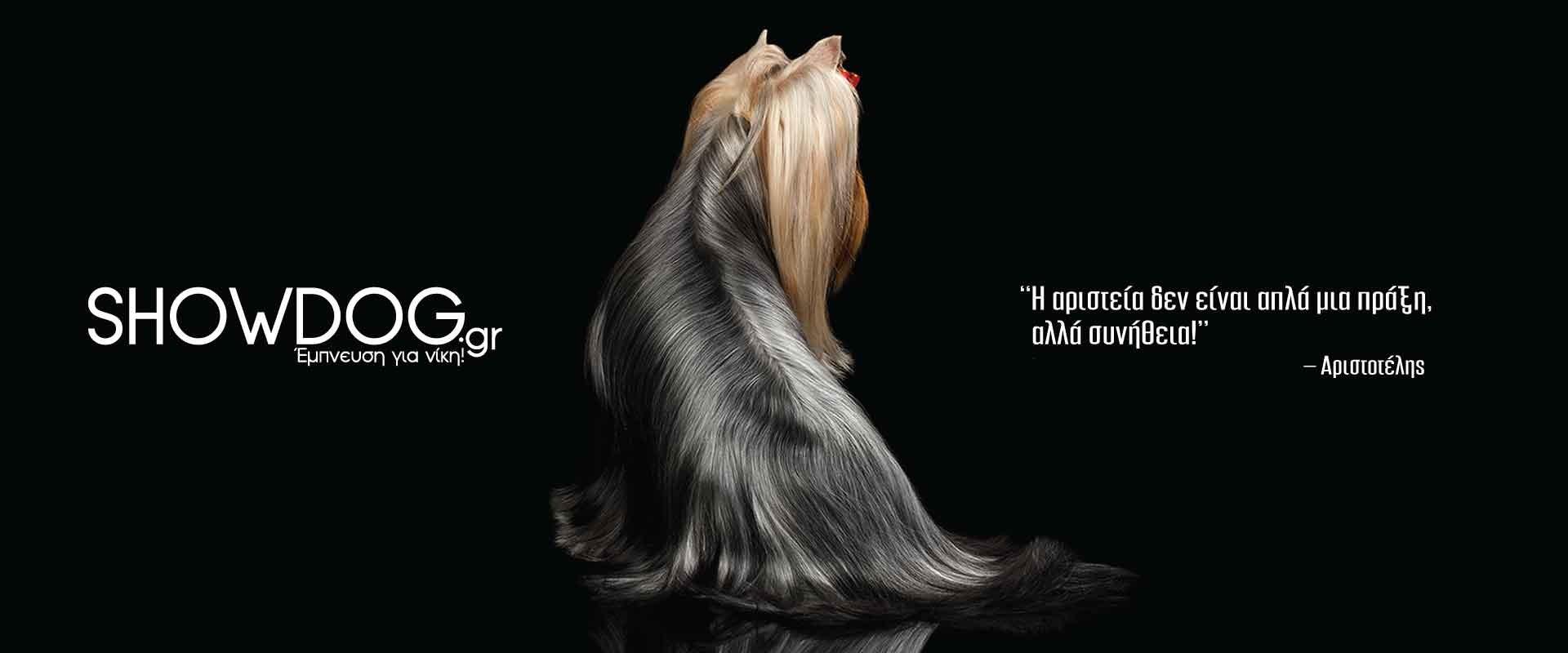 showdog.gr - Εκθεσιακά προϊόντα σκύλου